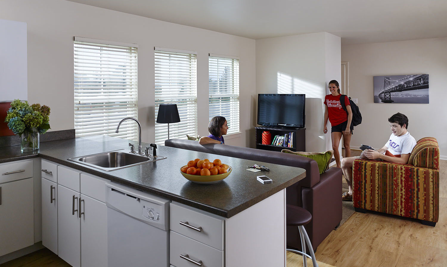 renovated student housing kitchen and living room